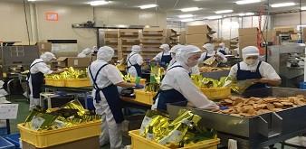 Tuyển 9 nữ chế biến sản xuất bánh kẹo tại tỉnh Saga Nhật Bản. Lương 30 triệu đồng/tháng