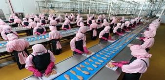 Thông báo tuyển thực tập sinh ngành chế biến thực phẩm tại tỉnh Mie Nhật Bản. Lương 31 triệu/tháng.