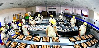 Thông báo tuyển Thực tập sinh ngành CNTP, Chương trình sản xuất thực phẩm về trứng làm việc tại Nhật Bản tháng 9/2018