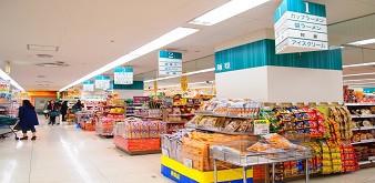 Thông báo tuyển dụng Thực tập sinh ngành Công nghệ thực phẩm tại Osaka, Nhật Bản